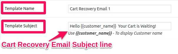 How to Recover Abandoned Carts in WooCommerce? 16