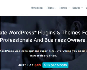 Freebies Website with WordPress (Best Themes and Practices)